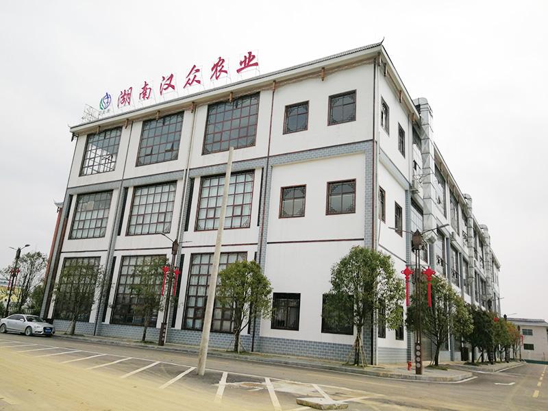湖南必威体育最新版下载农业发展有限公司,怀化纯天然七角艾草植物种植,怀化艾制品制造销售